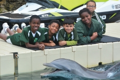 Heron Bay Dolphin Quest